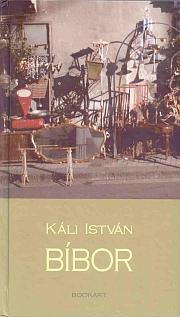 Kis erdélyi szappanopera, mégse szerelmes regény